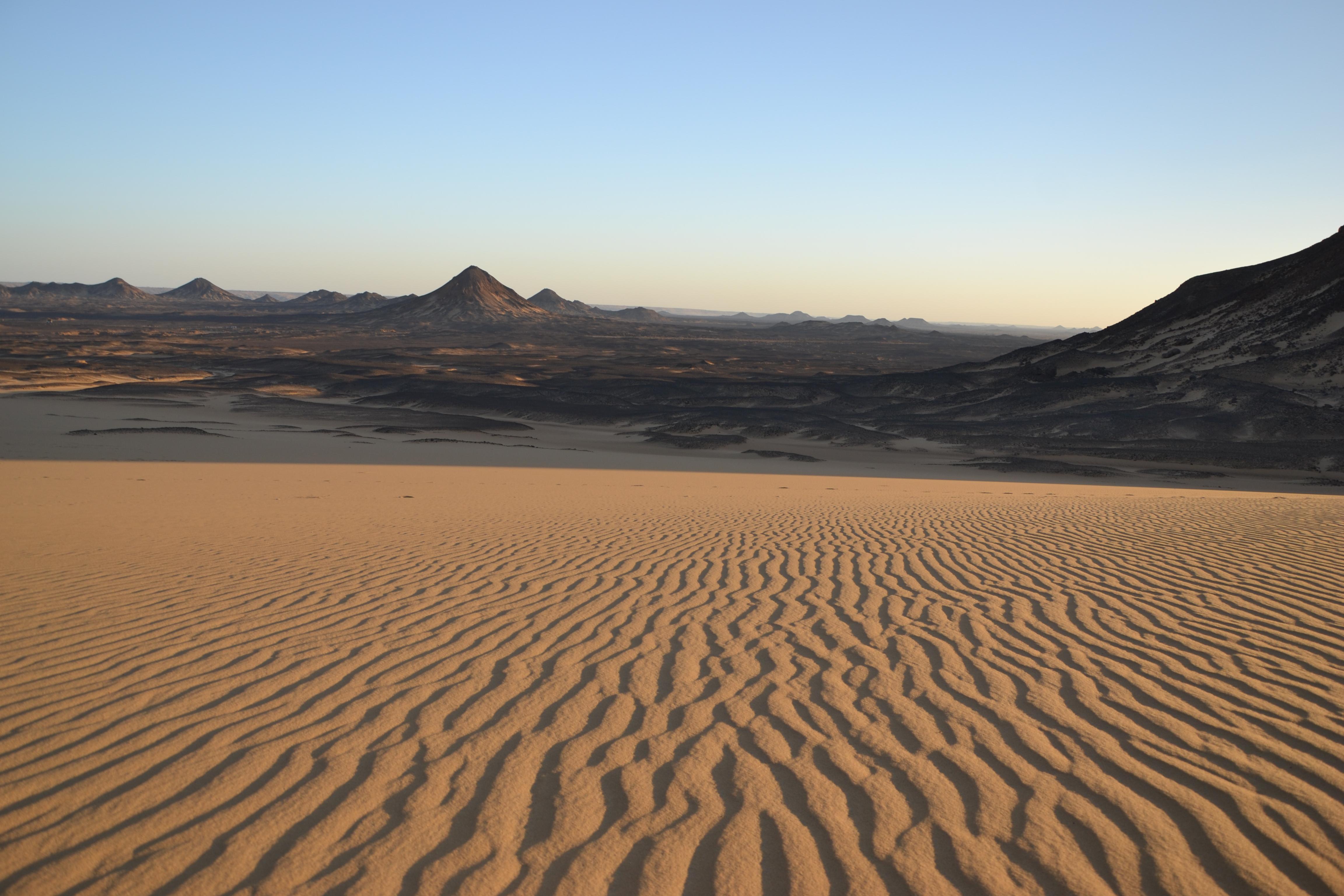 desert-noir-43