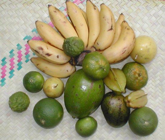 fruits-e79c2